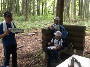 小学生によるブナ林散策風景